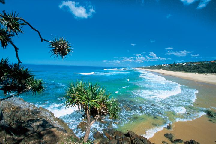Sunshine Coast Food Tour