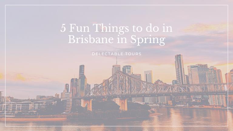5 fun things to do in brisbane